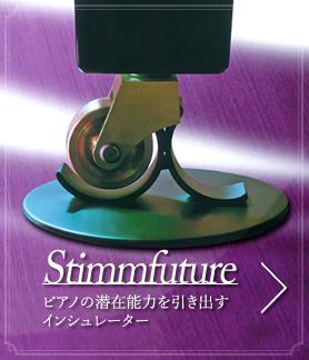 Stimmfuture|インシュレーター